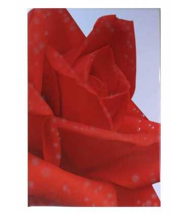 Imagen de Flor Rosa en Azulejo Blanco 20x30 cm - Ecart